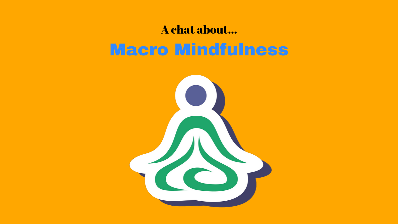 "A Chat About ""Macro-Mindfulness"""